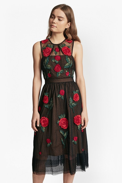 Amore Sparkle Embroidered Tulle Dress