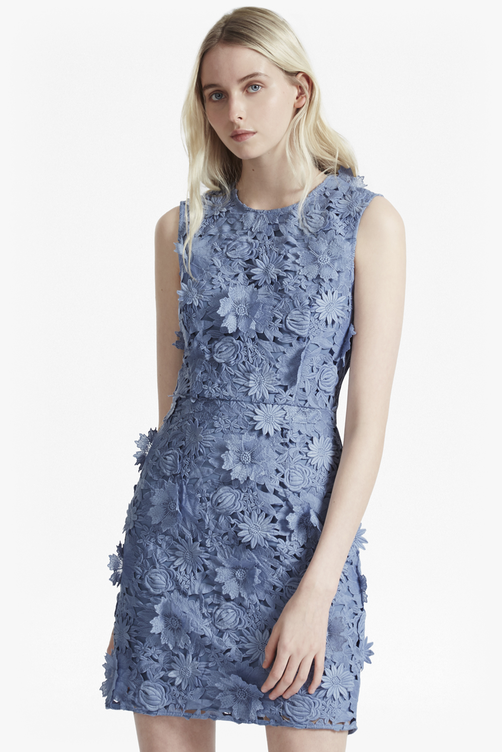 Manzoni 3D Floral Lace Dress | Sale | French Connection Usa