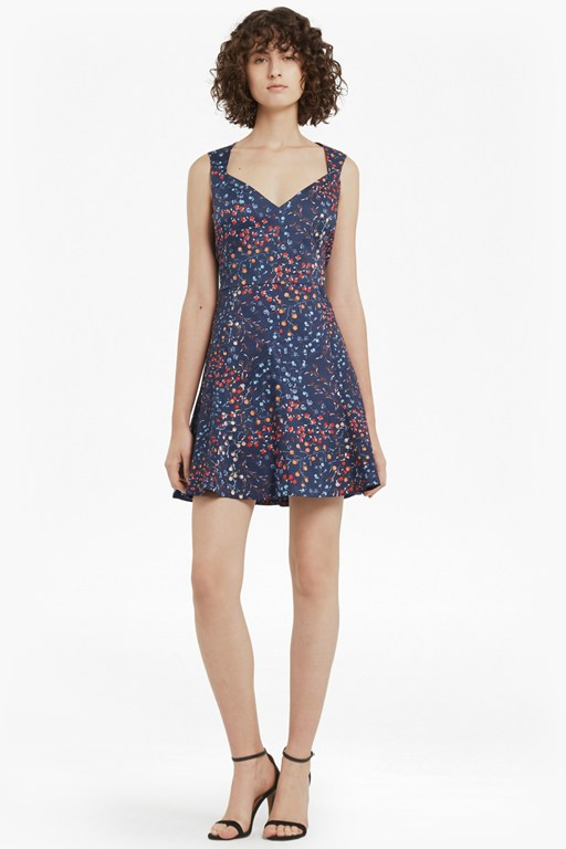 frances printed cotton skater dress