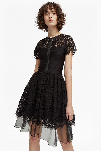 Shana Spotlight Flared Lace Dress