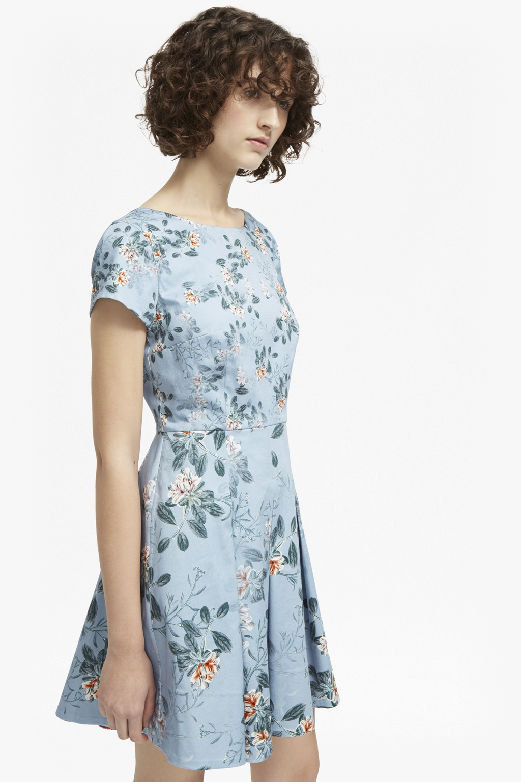 Kioa Cotton Flared Dress   Wedding Guest Dresses   French Connection Usa