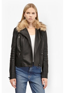 Blackbird Biker Jacket